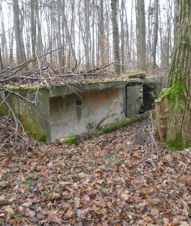 The Nazi pillbox in the woods behind The Glass House